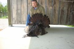 Bighorn-Turkey(76)